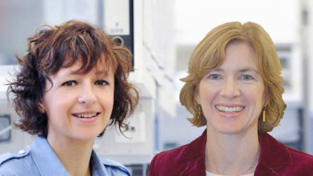 Charpentier y Doudna, premio Princesa de Asturias de Investigación Científica y Técnica
