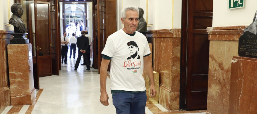 El diputado de Podemos, Diego Cañamero