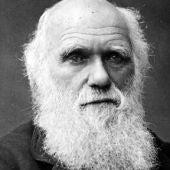 Darwin, 200 años de evolución