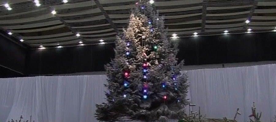 Un árbol de navidad gigante