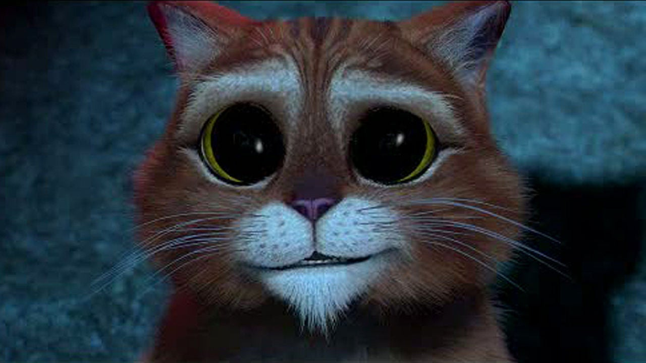 Картинки кот из шрека с грустными глазами с прикольными надписями