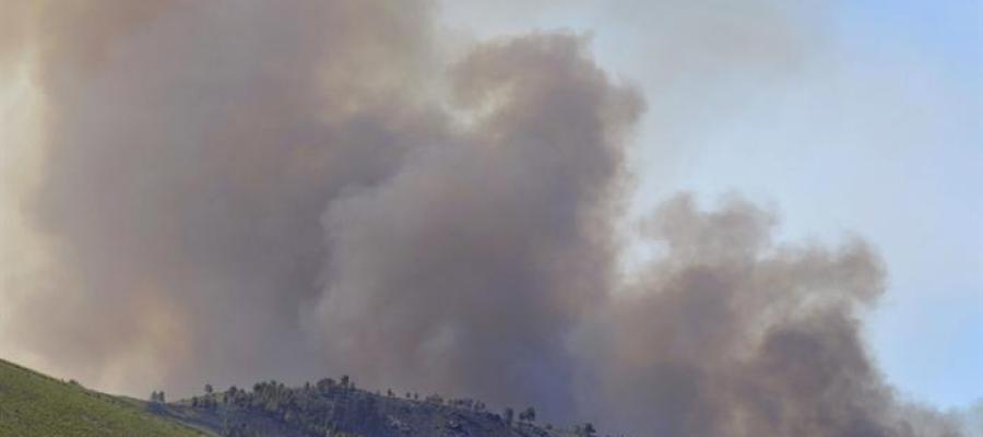 Columna de humo del incendio en la Sierra de Gata