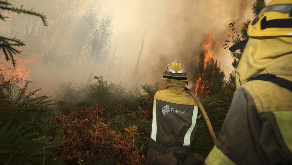 Controlados los incendios forestales de A Mezquita y Vilardevós, en Ourense
