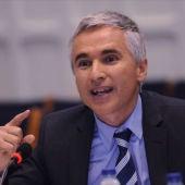 Profesor de Derecho Constitucional de la Universidad del País Vasco, Javier Tajadura