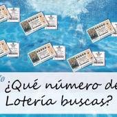 Buscador de lotería 2014
