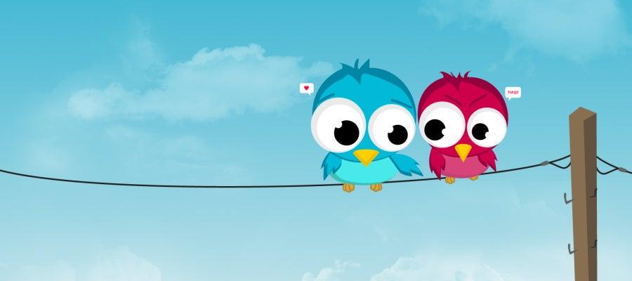 Pájaros de twitter enamorados
