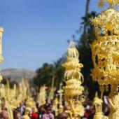 En Elche la Semana Santa arranca con la procesión de 'El Borriquito'