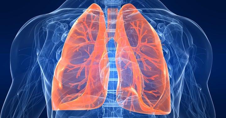 Fronteras del futuro: Nanopartículas para tratar la fibrosis pulmonar