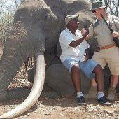 Elefante cazado en Zimbabue