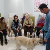 Terapia con perros-1