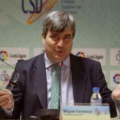 Miguel Cardenal, presidente del Consejo Superior de Deportes (CSD)