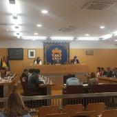 Sesión plenaria mayo