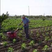Un hombre trabaja sobre un campo ecológico en una imagen de archivo