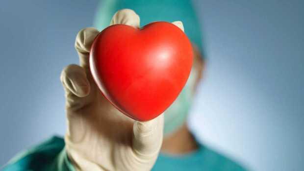 ¿Por qué España es líder mundial en trasplantes?