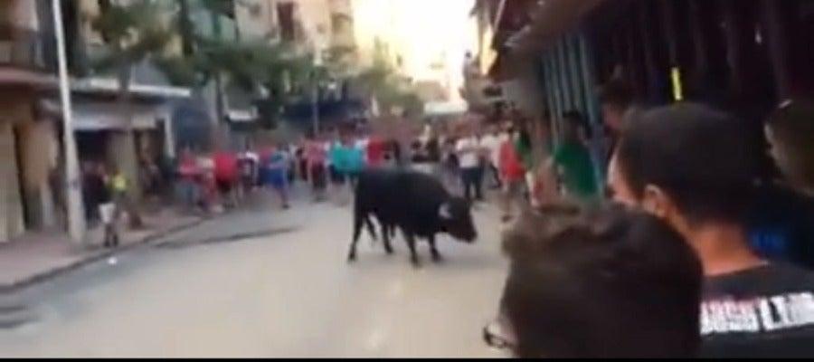 Imatge del primer bou de la vesprada en el festeig taurí del dissabte en el recinte de Vila-real.