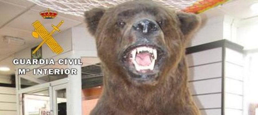 El ejemplar disecado de oso pardo en peligro de extinción que ha incautado el Seprona