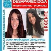 Cartel de búsqueda de Diana Quer