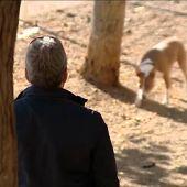 """Frame 23.059602 de: Detectives rastrean las calles de Tarragona para identificar a los que no recogen la """"caca"""" de sus perros"""