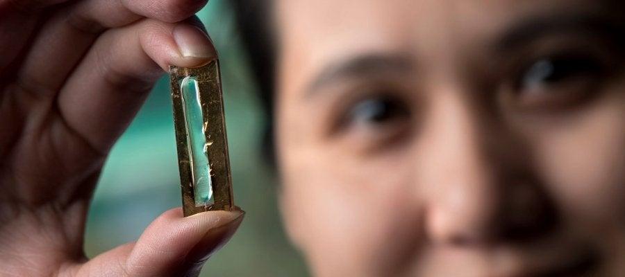 Crean una batería que podría llegar a durar 400 años