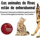 Rivanimal y Mascoteros Solidarios gestionan los animales domésticos de Rivas