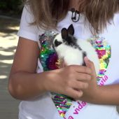 El CONEJO, la mascota ideal para niños. Buf, el conejito de Etna.