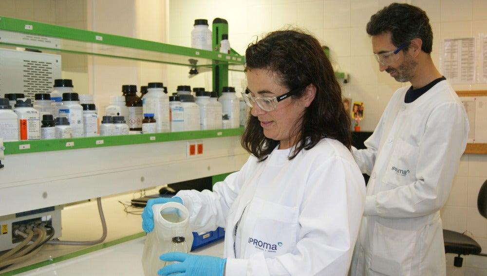 La empresa de Grupo Gimeno analizó más de 139.000 muestras y 1.125.000 parámetros durante el pasado ejercicio.