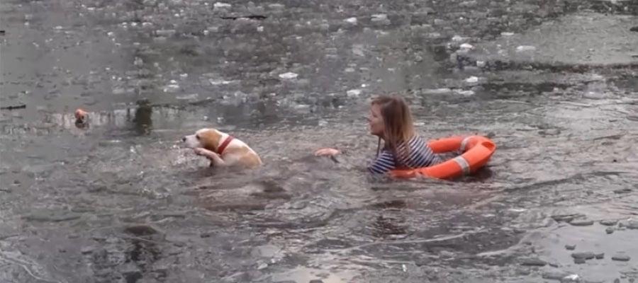 Una joven se lanza a rescatar a su perro