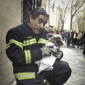 Bombero y Lucky tras ser rescatado