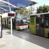 Dos autobuses del transporte público urbano de Elche.