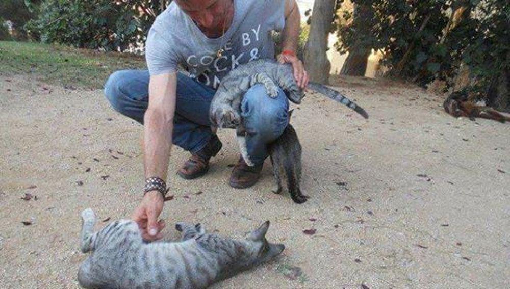 José Luis Pardo Hidalgo, cuidador de las colonias felinas en Lloret de Mar