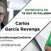 Carlos García Revenga