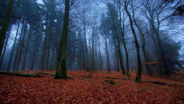 El Club del Misterio: Lugares a los que no irse a dormir