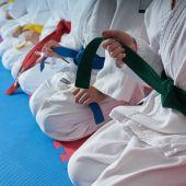Niños en una clase de artes marciales