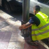 Un operario del Ayuntamiento de Elche aplicando la resina en una farola de la ciudad.