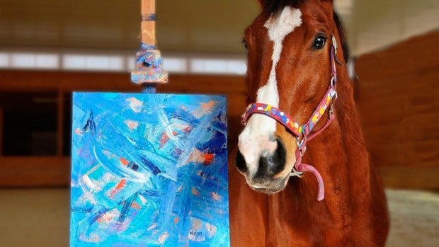 Metro, el caballo de carreras al que su afición por la pintura le ha dado una segunda oportunidad en la vida