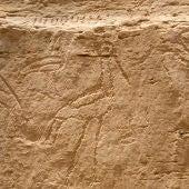 Los jeroglíficos hallados por arqueólogos de la Universidad de Yale