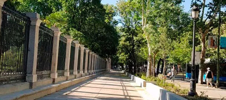 Recorrido peatonal del Jardín Botánico de Madrid