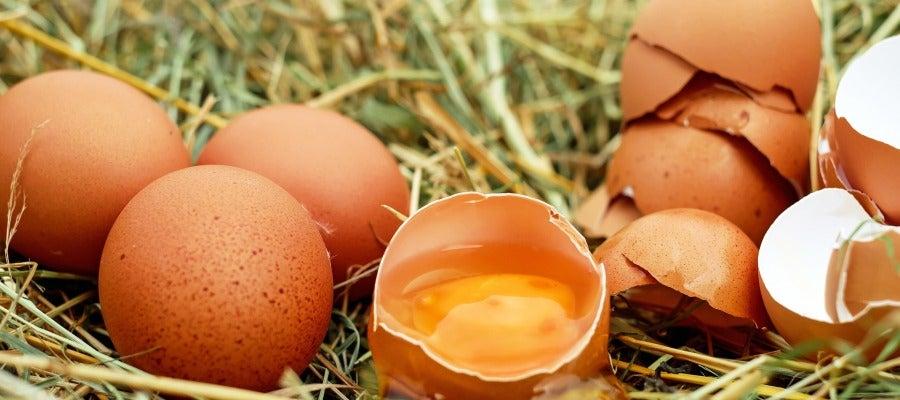 Huevos, imagen de archivo