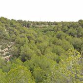 Sierra de Santa Pola
