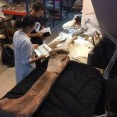 Fémur y varios huesos más del spinophosaurus