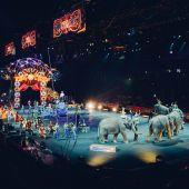Circos Reunidos denuncia a asociaciones animalistas por una presión ilícita contra circos con animales