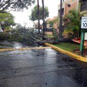 El huracán Irma llega a Florida