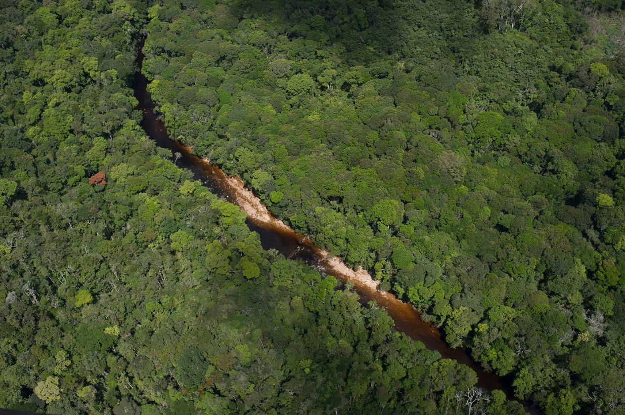 Punta Norte: Orellana y el Amazonas