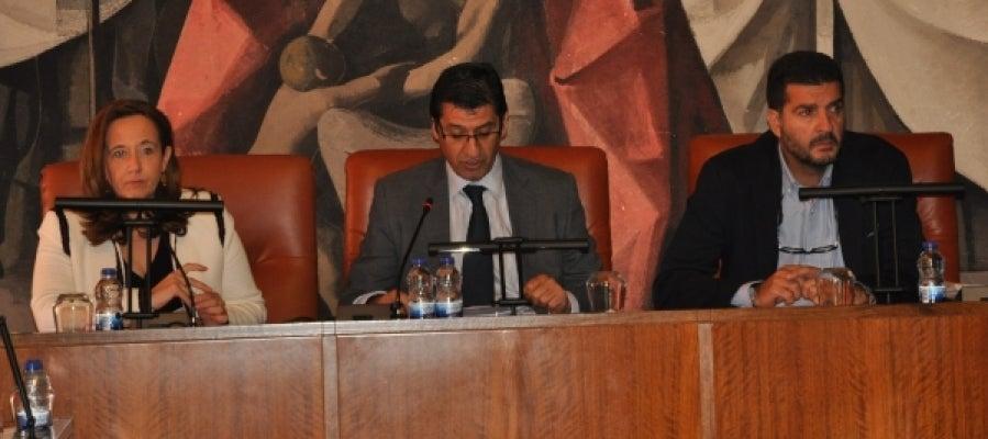 Pleno de la Diputación de C.Real