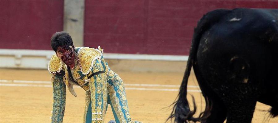 Cayetano Rivera, gravemente corneado en la Feria del Pilar.