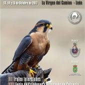 Cartel de 23 Jornadas Internacionales de Cetrería en el Norte de España