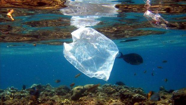 El fondo marino contaminado