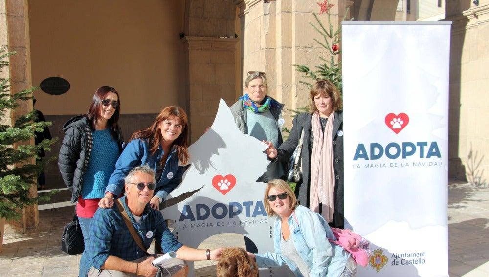 Con la campaña animan a adoptar a los animales que siguen sin hogar.