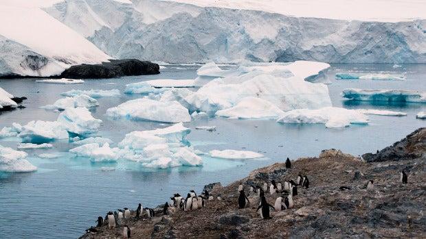 Descubrimos Isla Decepción: un volcán bajo el hielo de la Antártida