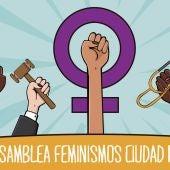 Asamblea Feminismos de Ciudad Real anima a la huelga del 8M